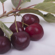Sweet cherries — Stock Photo #12819249