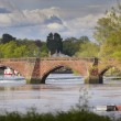 Old Bridge Chester — Stock Photo