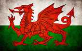 Welsh vlag — Stockvector