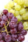 Bunch of green and red grapes on a white background — Stock Photo