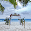 mariage tropical — Photo