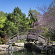 Wooden Bridge over pond in a Japanese Garden — Stock Photo