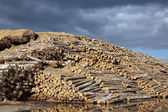 The warehouse of logs — Стоковое фото