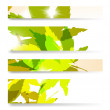 Autumn banner — Stock Vector #12155843