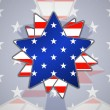 The abstract star with american flag — Stock Vector #41903245