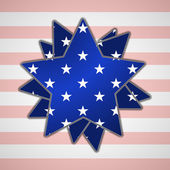 The abstract star with american flag — Stock Vector
