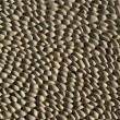 Stock Photo: Pattern of gray pebble