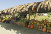 Pumpkins and fruits for sale in market along a rural road — Stock Photo