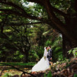 Stock Photo: Bride and groom kissing in park