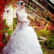 Stock Photo: Bride posing on background of flowers