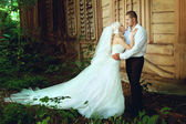Beautiful wedding couple — Stockfoto