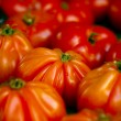 Beefsteak tomatoes — Stock Photo