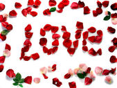 Word love of rose petals — Stock Photo