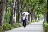 Korean woman walking with umbrella. — Stock Photo