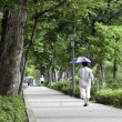 Stock Photo: Walking with umbrellfor shade.