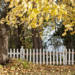 Stock Photo: Autumn trees and white fence.