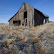 Stock Photo: Run down barn on Palouse.