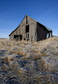 Run down barn on the Palouse. — Stock Photo