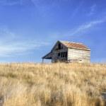 Little barn on the palouse. — Stock Photo #17043223