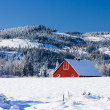 Part of red barn in winter. — Stock Photo