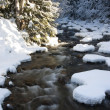 Mountain stream in winter. — Foto Stock