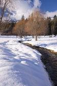 Stream in winter. — Stock Photo