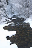 Wintry mountain stream. — Stock Photo