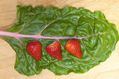 Strawberries on green chard. — Stock Photo