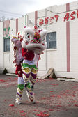Lunar New years lion dance. — Stock Photo