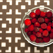 Stock Photo: Frozen cranberries.