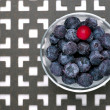 Blueberries and a cranberry. — Stock Photo