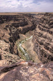 River at Bruneau Canyon in Idaho. — Stock Photo