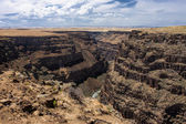 Bruneau canyon overlook. — Stock fotografie