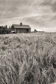 B&W of farm field and barn. — Stockfoto