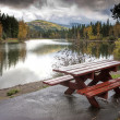 Pretty scenic by the picnic table. — Stock Photo