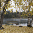 Autumn by Pend Oreille River. — Stock Photo