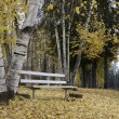 Empty bench in Autumn park. — Stock Photo