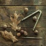 Acorns on rustic wood. — Stock Photo #44385763