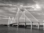 B&w kablo köprüsü. — Stok fotoğraf