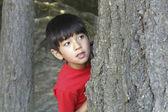 Boy peeks from behind tree. — Stock Photo