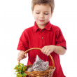 Royalty-Free Stock Photo: Little boy with kitten in basket