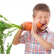 Royalty-Free Stock Photo: Little boy biting the carrot