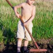 Little boy works with rake — Stock Photo