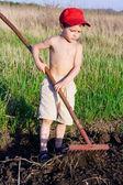 Little boy works with rake — Stock Photo