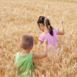 Two kids on a wheat field — Stock Photo