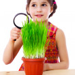 Girl with magnifier and grass — Stock Photo