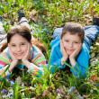 Kidsl among the bluebells — Stock Photo