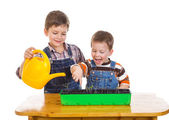Two kids watering the seedling — Stock Photo