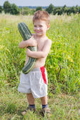 Little boy with zucchini on field — Stock Photo