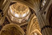 Salamanca Cathedral Dome — Stock Photo